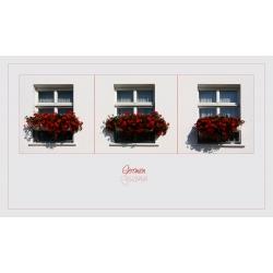 Geranien-Fenster (Kühlungsborn)